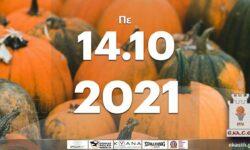 Το πρόγραμμα αγώνων της Πέμπτης (14/10/2021)📆 Διαιτητές και κριτές που έχουν ορισθεί
